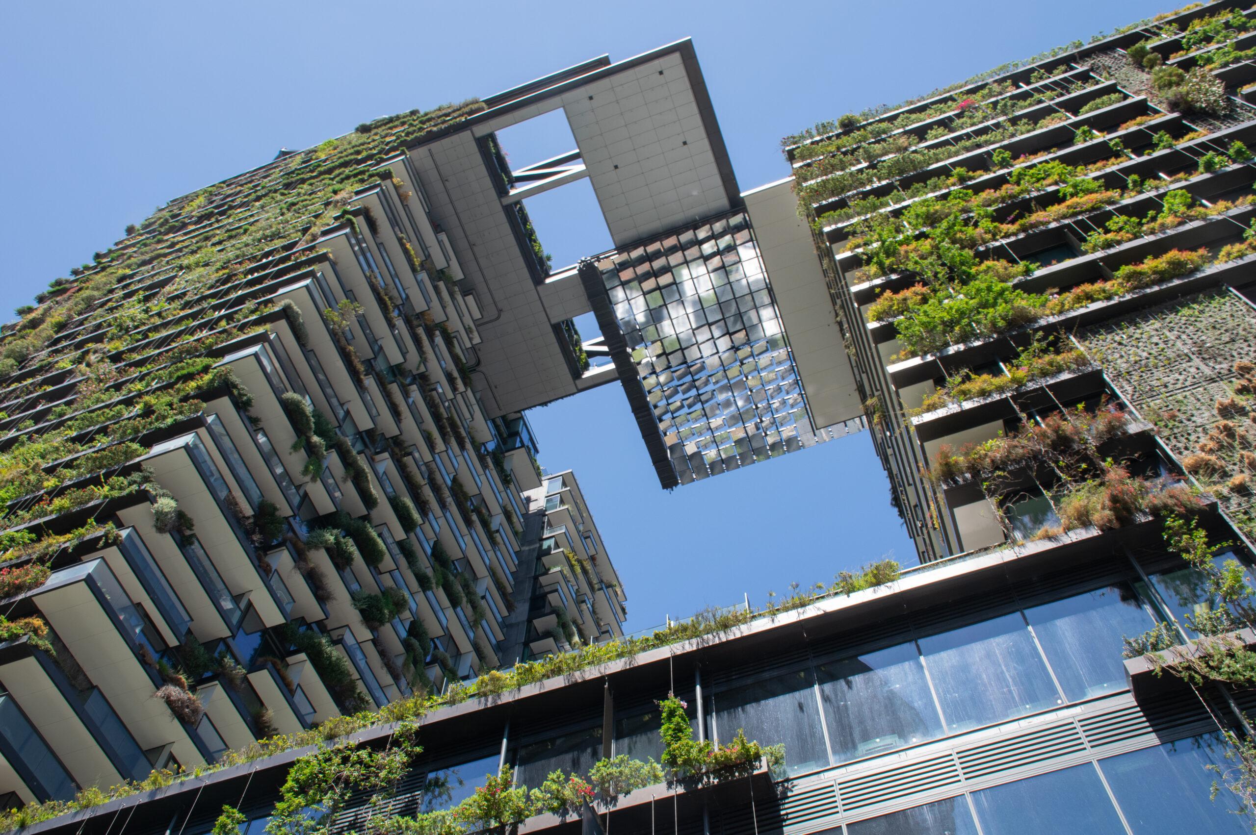 Projetos Sustentáveis: Por Que Investir?